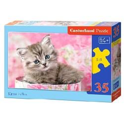 Castorland Puzzle Mačiatko v škatuli, 35 dielikov