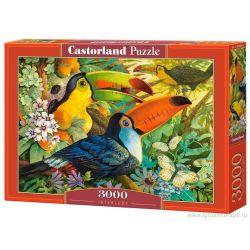 Castorland Puzzle Medzihra, 3000 dielikov