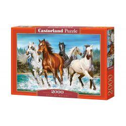 Castorland Puzzle Volanie divočiny, 2000 dielikov