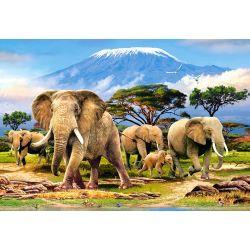 Castorland Puzzle  Ráno v Kilimanjaro, 1000 dielov