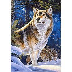 Castorland Puzzle Vlk, 1000 dielov