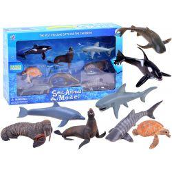 Set morských zvieratiek
