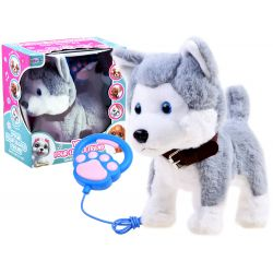 Interaktívny psík Husky na vodítku, šteká